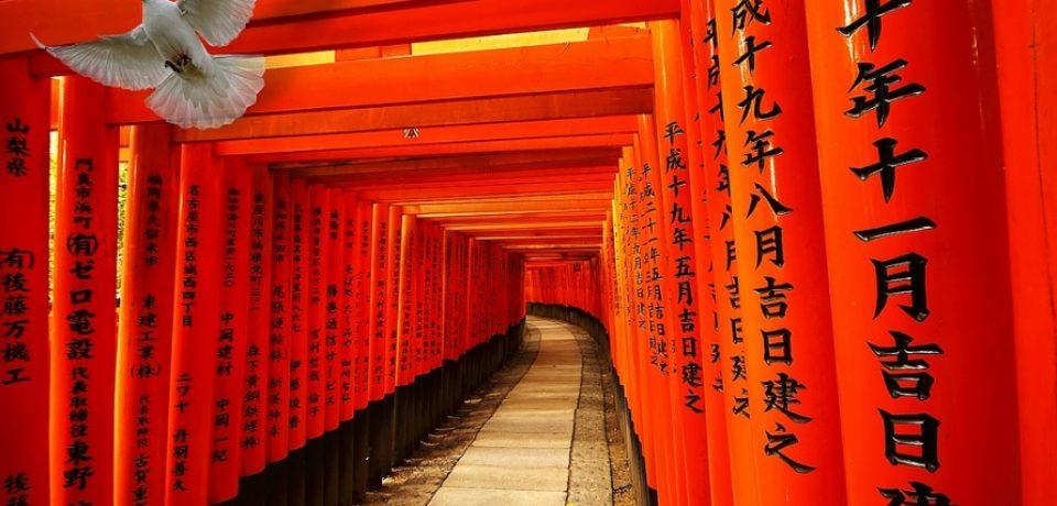 Japonés matrícula abierta